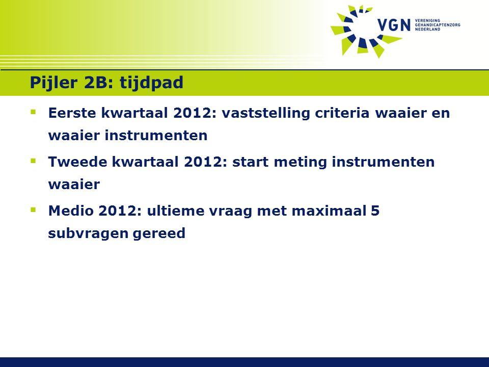 Pijler 2B: tijdpad  Eerste kwartaal 2012: vaststelling criteria waaier en waaier instrumenten  Tweede kwartaal 2012: start meting instrumenten waaier  Medio 2012: ultieme vraag met maximaal 5 subvragen gereed