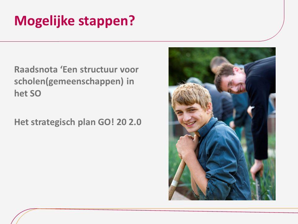 Mogelijke stappen? Raadsnota 'Een structuur voor scholen(gemeenschappen) in het SO Het strategisch plan GO! 20 2.0