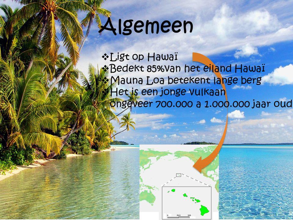 Algemeen  Ligt op Hawaï  Bedekt 85%van het eiland Hawaï  Mauna Loa betekent lange berg  Het is een jonge vulkaan ongeveer 700.000 a 1.000.000 jaar