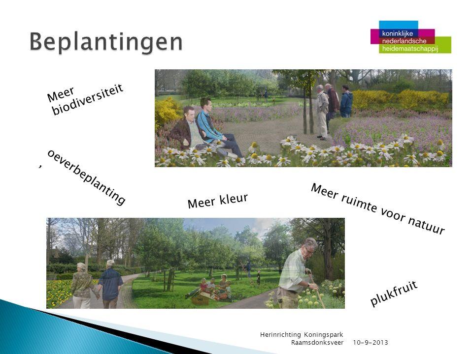 10-9-2013 Herinrichting Koningspark Raamsdonksveer oeverbeplanting, Meer biodiversiteit plukfruit Meer ruimte voor natuur Meer kleur