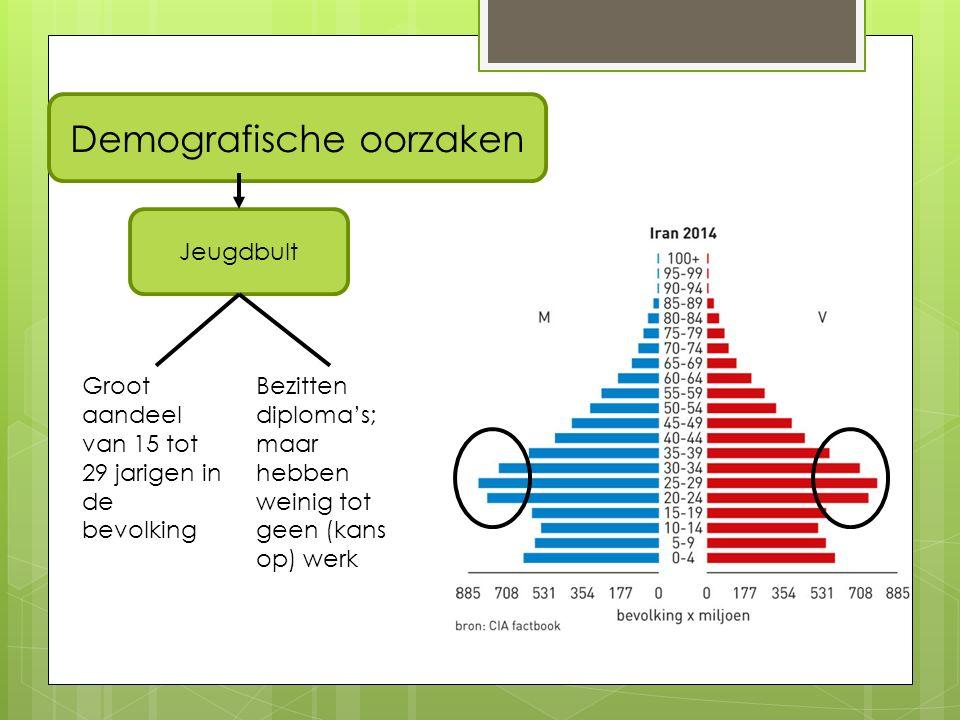 Demografische oorzaken Jeugdbult Groot aandeel van 15 tot 29 jarigen in de bevolking Bezitten diploma's; maar hebben weinig tot geen (kans op) werk