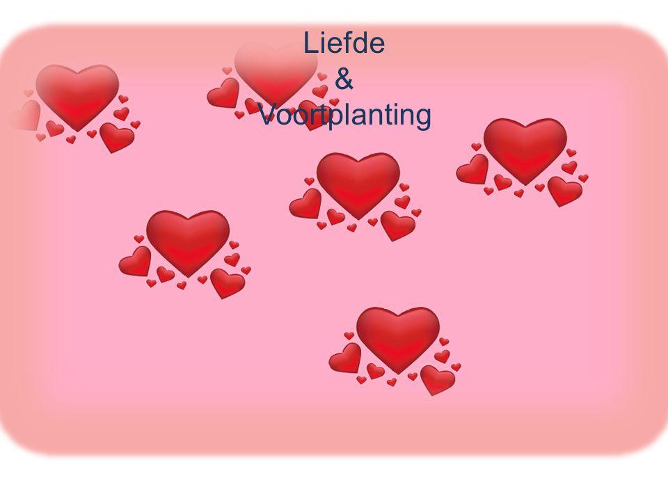 Liefde & Voortplanting