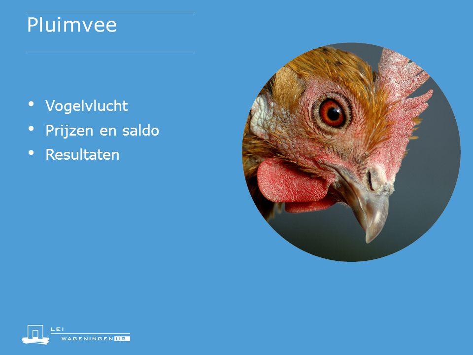 Pluimvee Vogelvlucht Prijzen en saldo Resultaten