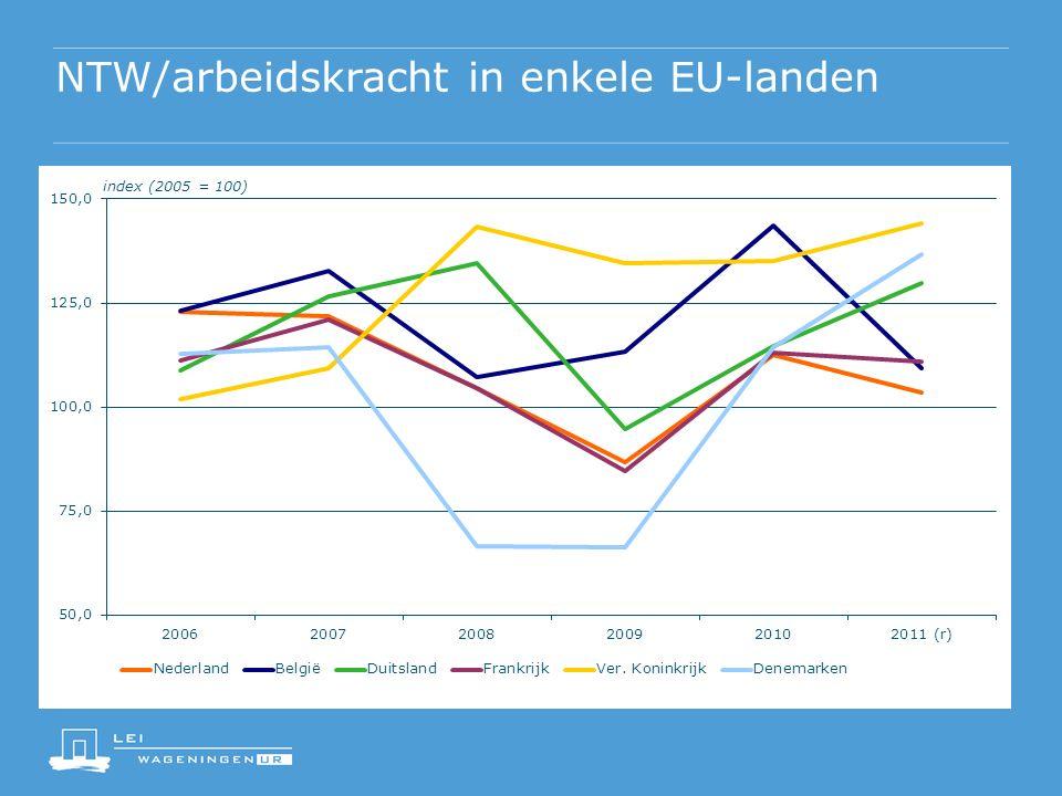 NTW/arbeidskracht in enkele EU-landen index (2005 = 100)