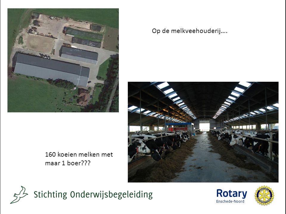 Op de melkveehouderij…. 160 koeien melken met maar 1 boer Enschede-Noord