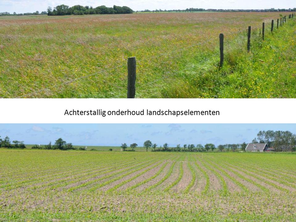 Achterstallig onderhoud landschapselementen
