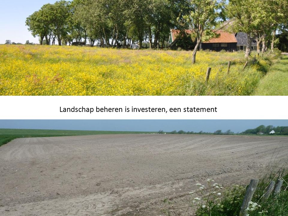 Landschap beheren is investeren, een statement