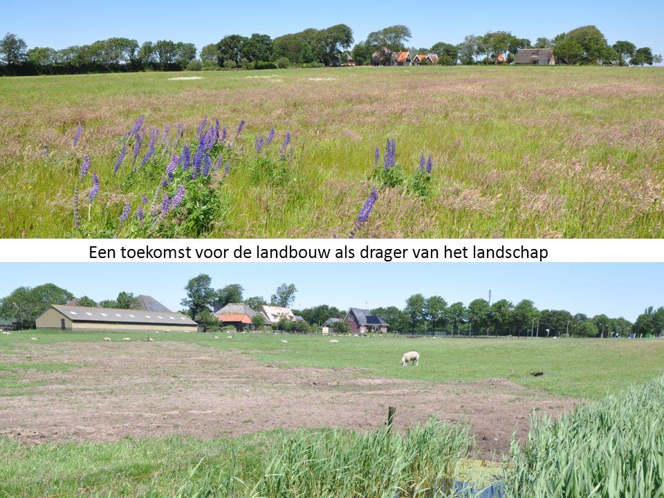 Een toekomst voor de landbouw als drager van het landschap