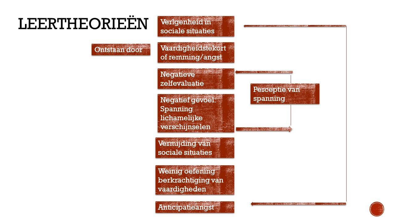  Gesprekken  Situatie  Gedragingen  Gedachten  Gevoelens  Meetinstrumenten  'De sociale Angst Schaal voor kinderen' (cohen-kettenis & Dekking.