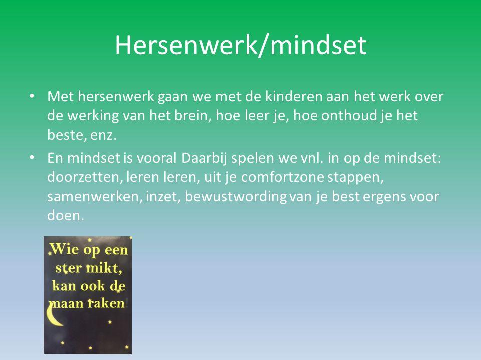 Mindset Mindset meer bepalend voor succes dan talent De afgelopen 20 jaar deed Carol Dweck onderzoek naar mindset.