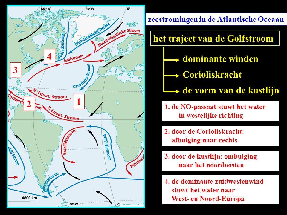zeestromingen in de Atlantische Oceaan het traject van de Golfstroom dominante winden Corioliskracht de vorm van de kustlijn 1 1. de NO-passaat stuwt