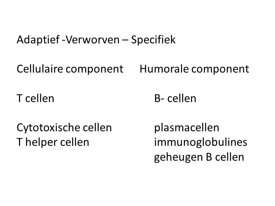 Adaptief -Verworven – Specifiek Cellulaire component Humorale component T cellenB- cellen Cytotoxische cellenplasmacellen T helper cellen immunoglobul