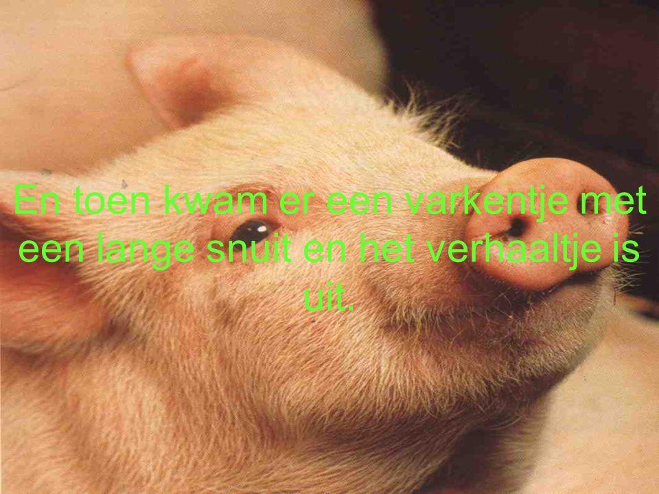 En toen kwam er een varkentje met een lange snuit en het verhaaltje is uit.
