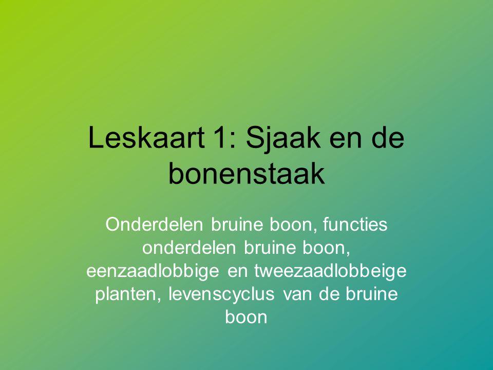 Leskaart 1: Sjaak en de bonenstaak Onderdelen bruine boon, functies onderdelen bruine boon, eenzaadlobbige en tweezaadlobbeige planten, levenscyclus van de bruine boon
