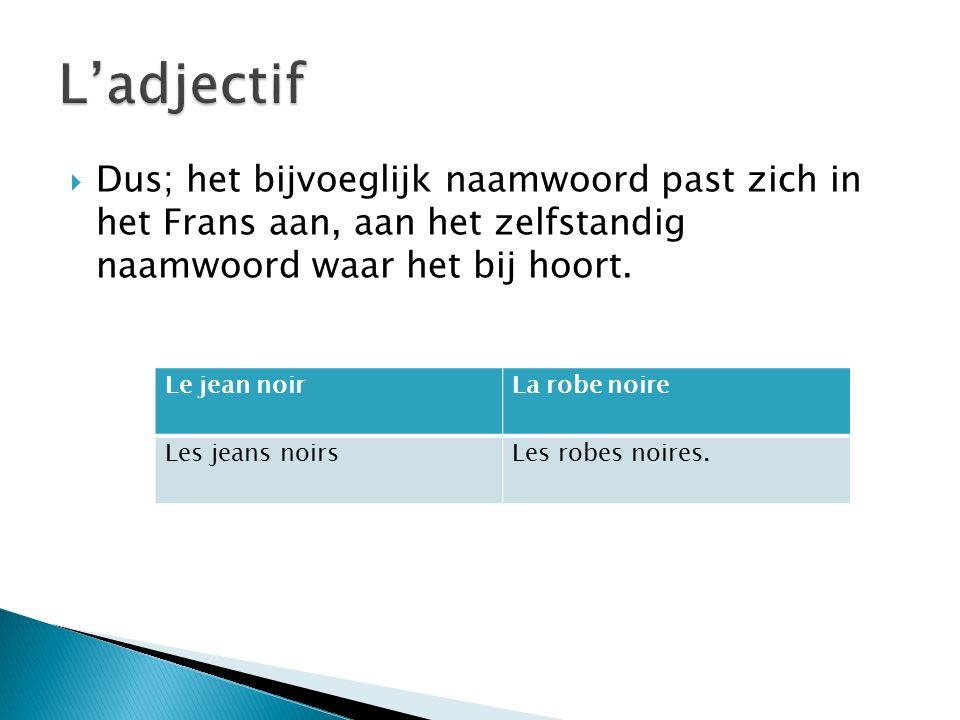  Dus; het bijvoeglijk naamwoord past zich in het Frans aan, aan het zelfstandig naamwoord waar het bij hoort.
