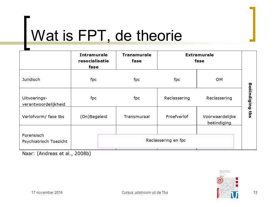 Wat is FPT, de theorie 17 november 2014Cursus uitstroom uit de Tbs13