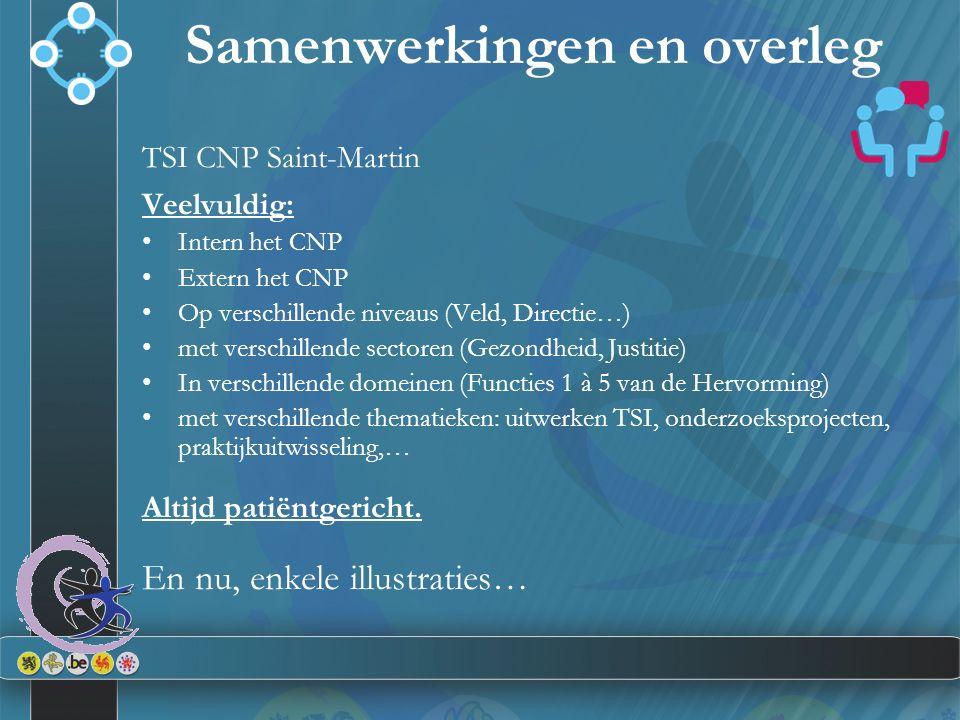 TSI CNP Saint-Martin Veelvuldig: Intern het CNP Extern het CNP Op verschillende niveaus (Veld, Directie…) met verschillende sectoren (Gezondheid, Just