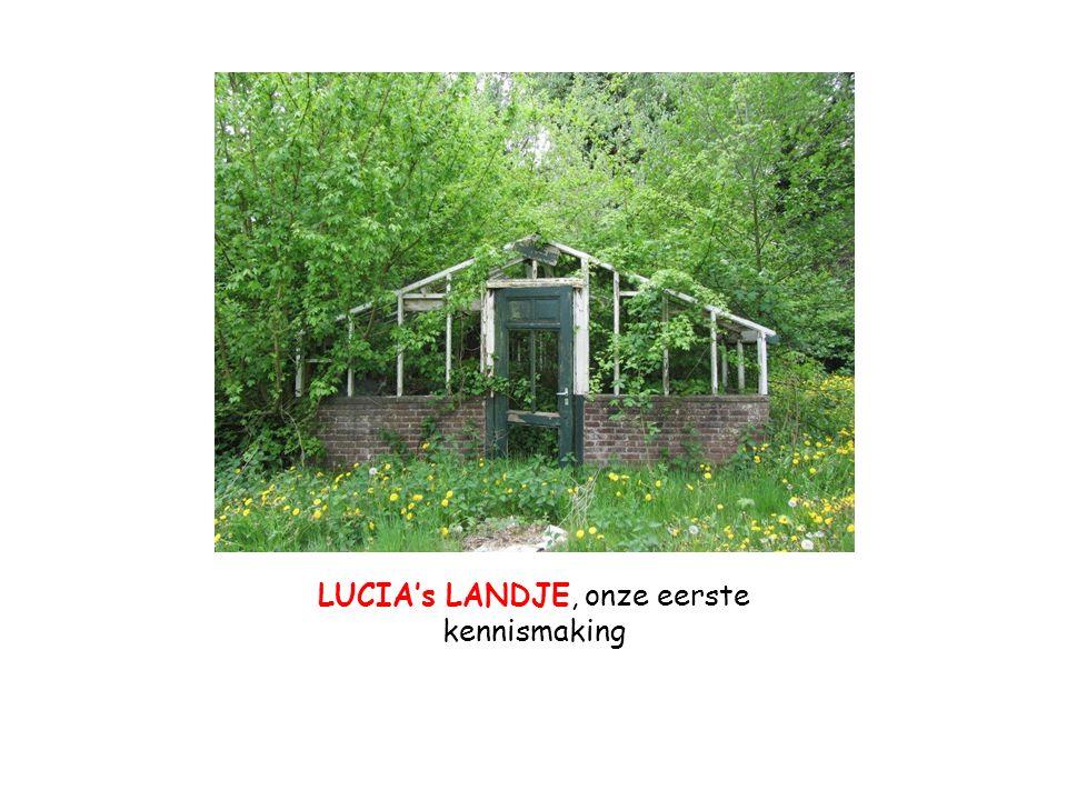 LUCIA's LANDJE, onze eerste kennismaking