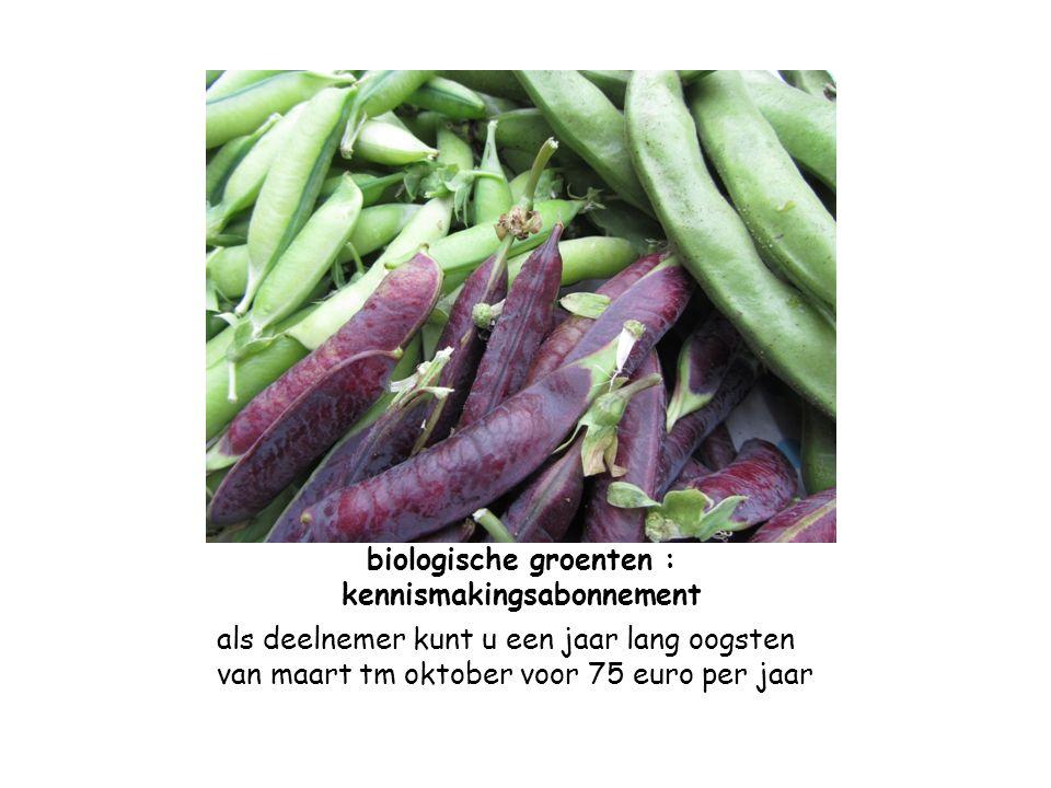 biologische groenten : kennismakingsabonnement als deelnemer kunt u een jaar lang oogsten van maart tm oktober voor 75 euro per jaar