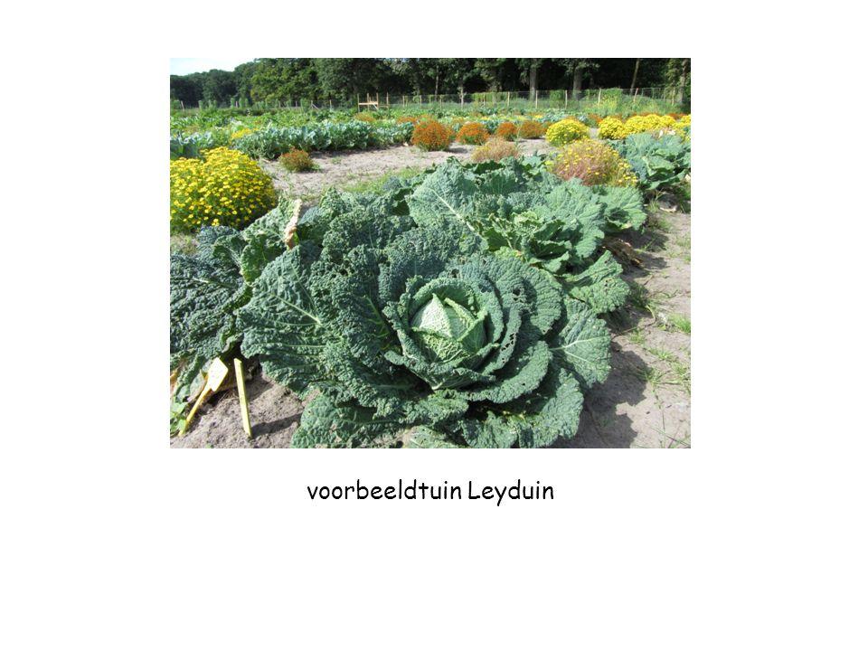 voorbeeldtuin Leyduin