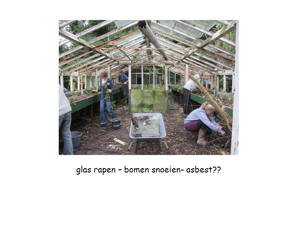 glas rapen – bomen snoeien- asbest??