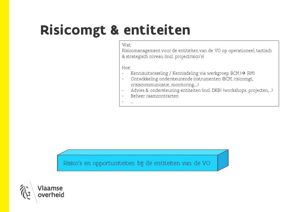 Risicomgt & entiteiten: voorbeelden BCP DKB / BCP Vlaams Parlement,… Risico- en opportuniteitenraamwerk bij DEWI DKB ondersteunt (opstart met AgO) Kader Instrumenten Projecten Risicomanagement bij dept MOW (KPMG) … Raamcontract Möbius, KPMG, Trilations via mini-competitie