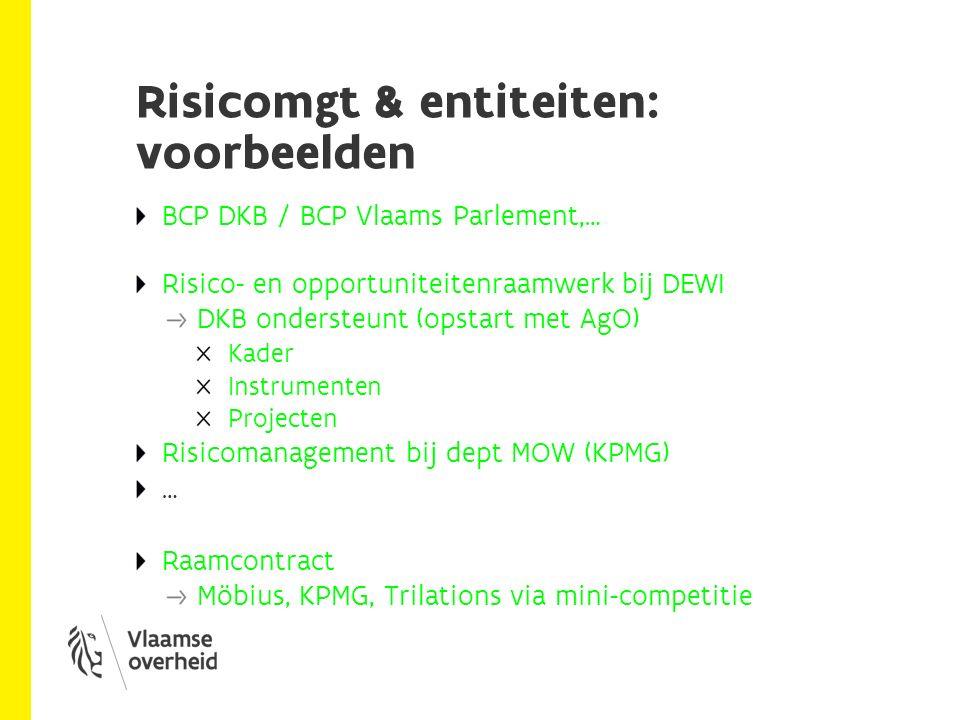 Risicomgt & VO als holding Risico's en opportuniteiten op niveau van de VO Wat: Risicomanagement voor de VO (als geheel) op strategisch niveau Hoe: - Strategische risico's voor de VO (als organisatie) - Gemeenschappelijke taal op het vlak van RM - CCVO met een duidelijk mandaat (incl.