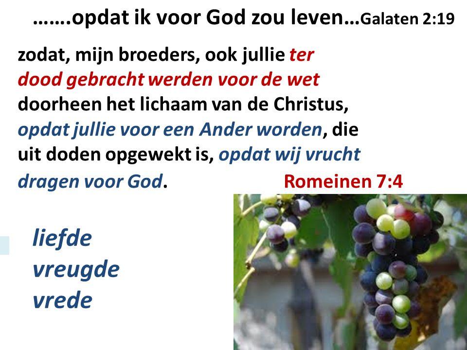 zodat, mijn broeders, ook jullie ter dood gebracht werden voor de wet doorheen het lichaam van de Christus, opdat jullie voor een Ander worden, die ui