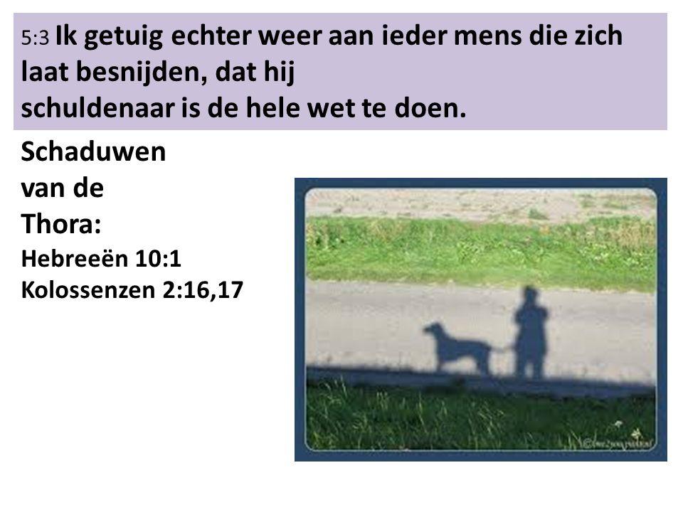 5:3 Ik getuig echter weer aan ieder mens die zich laat besnijden, dat hij schuldenaar is de hele wet te doen.