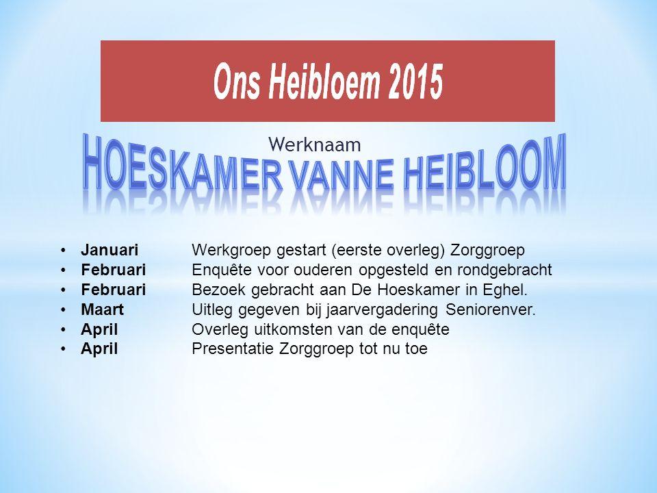 Werknaam - Januari Werkgroep gestart (eerste overleg) Zorggroep Februari Enquête voor ouderen opgesteld en rondgebracht FebruariBezoek gebracht aan De Hoeskamer in Eghel.