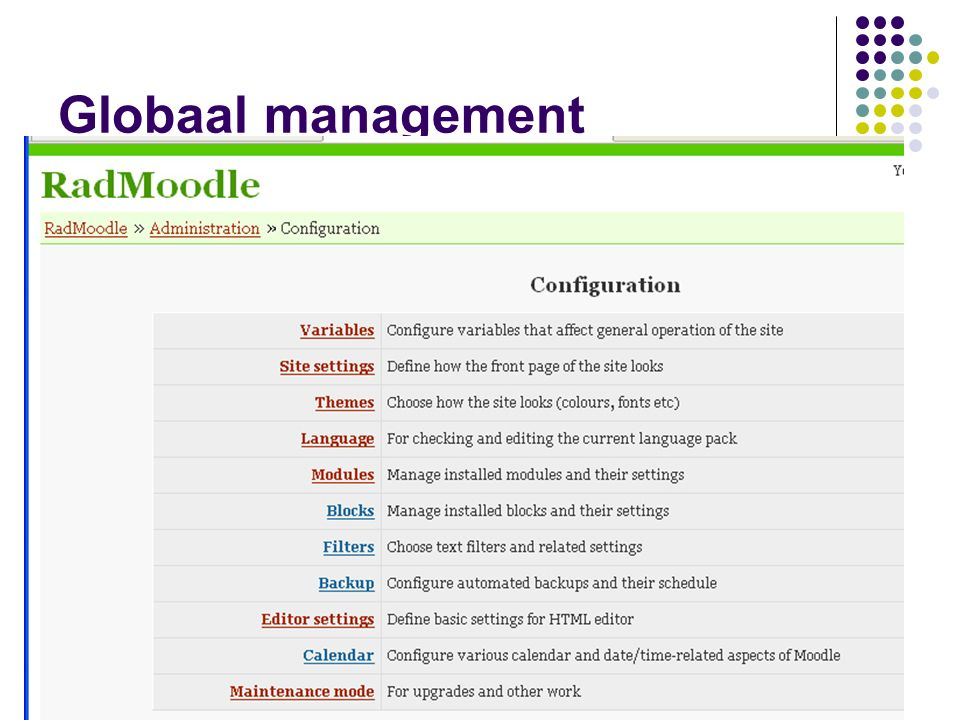 Actieve content – details De Quiz We zagen als student De intropagina Een vragenpagina Eerst weer even een voorbeeld bekijken