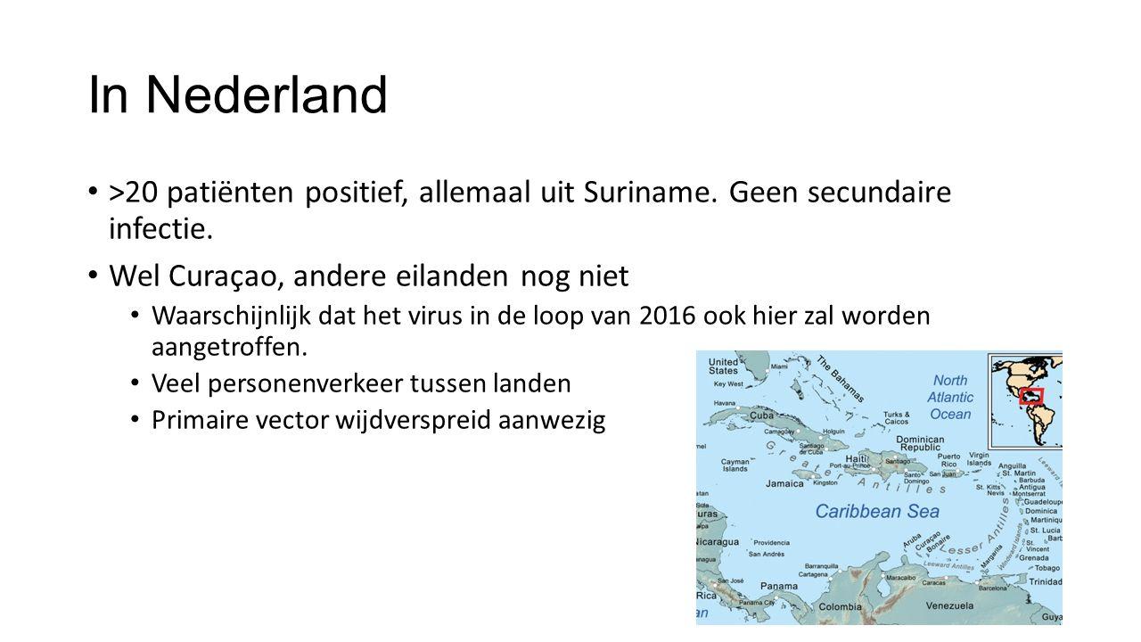 In Nederland >20 patiënten positief, allemaal uit Suriname. Geen secundaire infectie. Wel Curaçao, andere eilanden nog niet Waarschijnlijk dat het vir