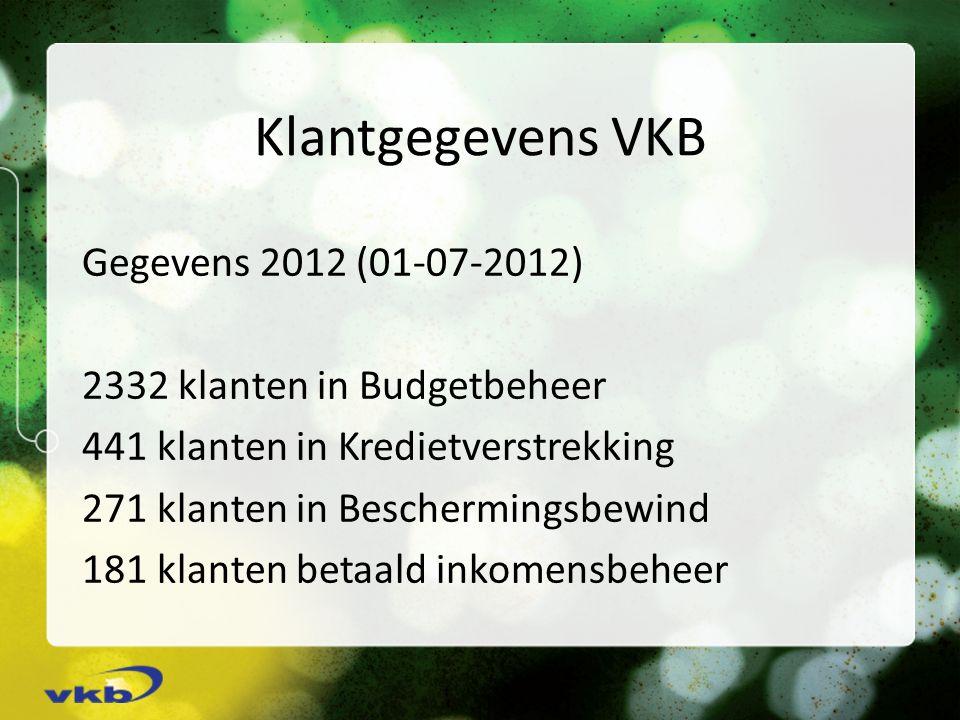 Klantgegevens VKB Gegevens 2012 (01-07-2012) 2332 klanten in Budgetbeheer 441 klanten in Kredietverstrekking 271 klanten in Beschermingsbewind 181 klanten betaald inkomensbeheer