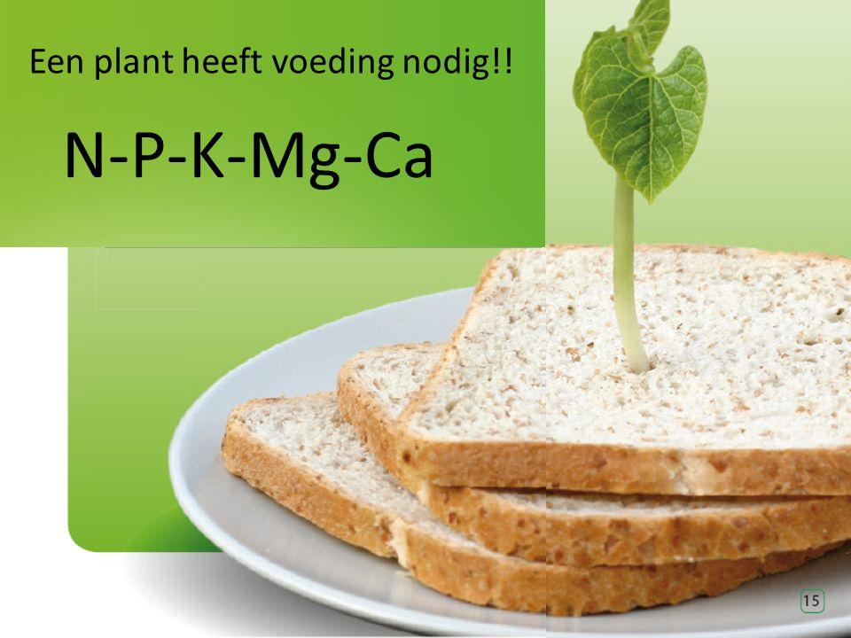 Een plant heeft voeding nodig!! N-P-K-Mg-Ca