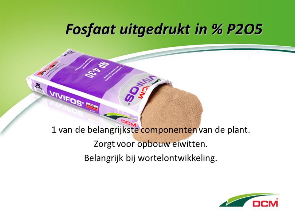 Fosfaat uitgedrukt in % P2O5 1 van de belangrijkste componenten van de plant.