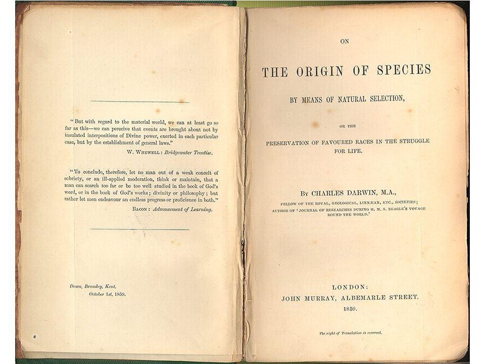 -Darwins uitgangspunt: het probleem van de soorten : hoe ontstaan soorten .