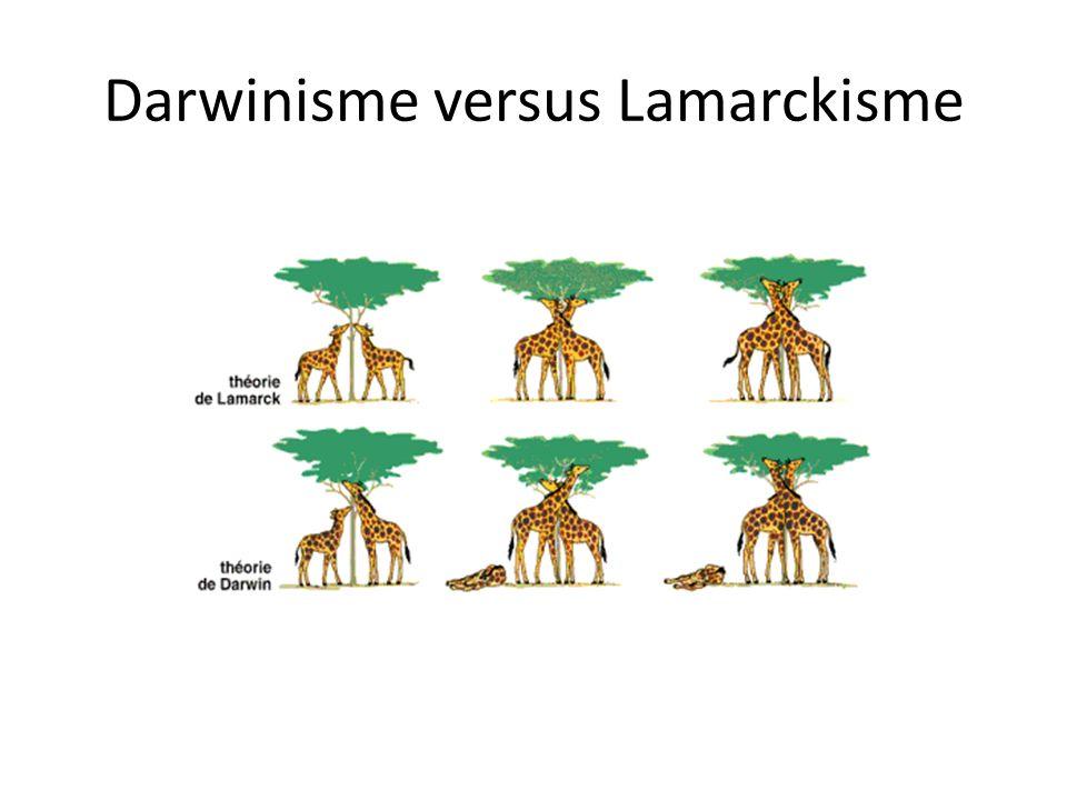 Darwinisme versus Lamarckisme