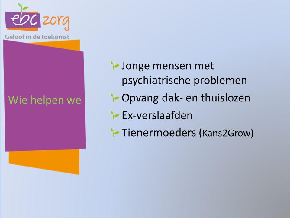 Wie helpen we Jonge mensen met psychiatrische problemen Opvang dak- en thuislozen Ex-verslaafden Tienermoeders ( Kans2Grow)