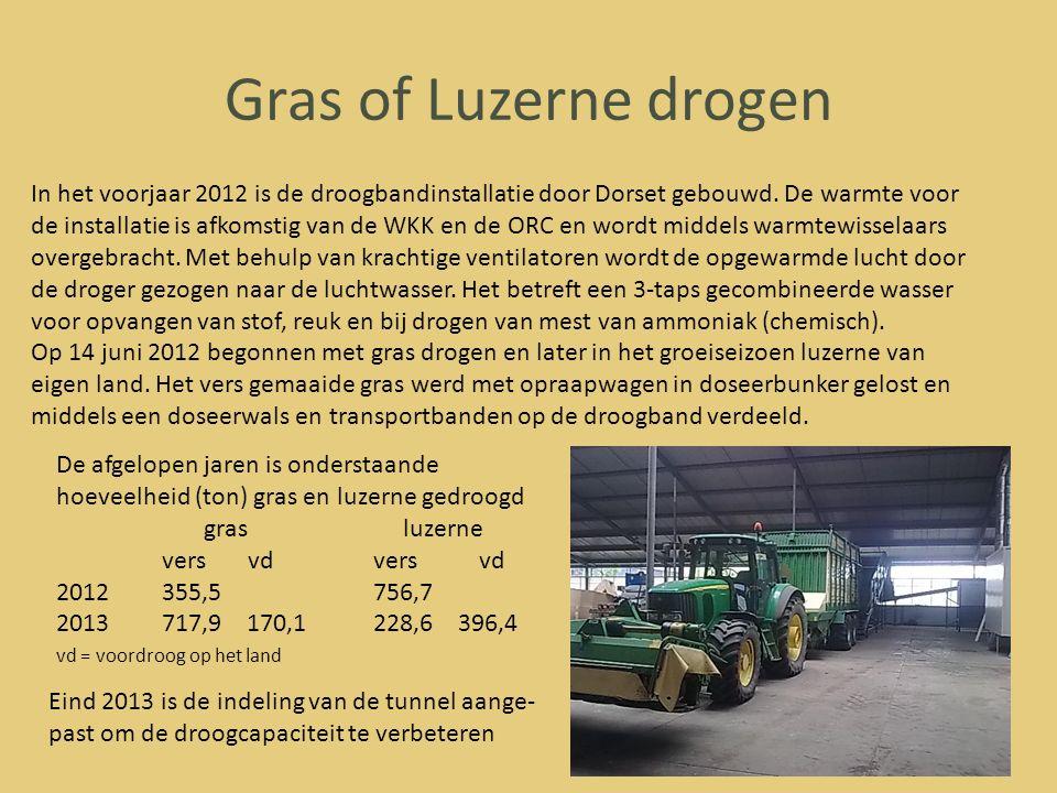 Gras of Luzerne drogen In het voorjaar 2012 is de droogbandinstallatie door Dorset gebouwd. De warmte voor de installatie is afkomstig van de WKK en d