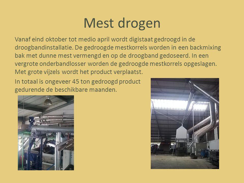 Mest drogen Vanaf eind oktober tot medio april wordt digistaat gedroogd in de droogbandinstallatie. De gedroogde mestkorrels worden in een backmixing