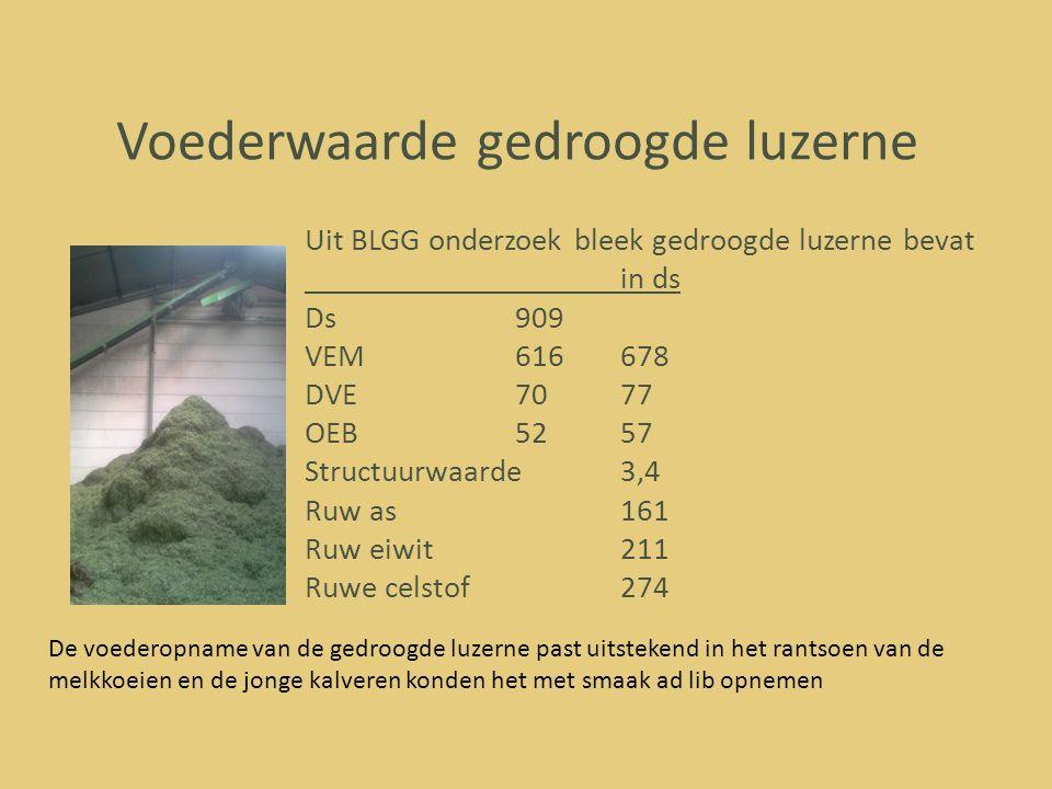 Voederwaarde gedroogde luzerne Uit BLGG onderzoek bleek gedroogde luzerne bevat in ds Ds909 VEM616678 DVE7077 OEB5257 Structuurwaarde3,4 Ruw as161 Ruw