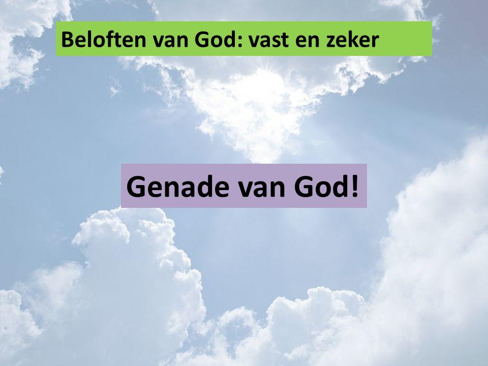 Beloften van God: vast en zeker Genade van God!