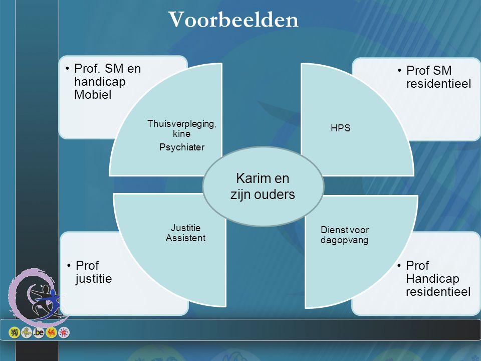 Voorbeelden Prof Handicap residentieel Prof justitie Prof SM residentieel Prof. SM en handicap Mobiel Thuisverpleging, kine Psychiater HPS Dienst voor