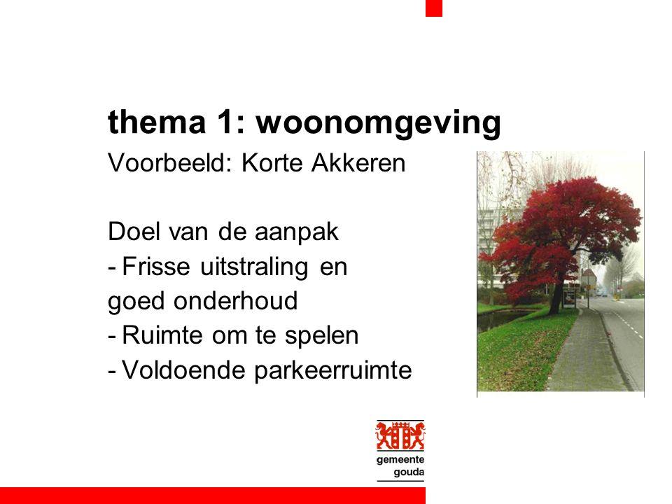 thema 1: woonomgeving Voorbeeld: Korte Akkeren Doel van de aanpak -Frisse uitstraling en goed onderhoud -Ruimte om te spelen -Voldoende parkeerruimte