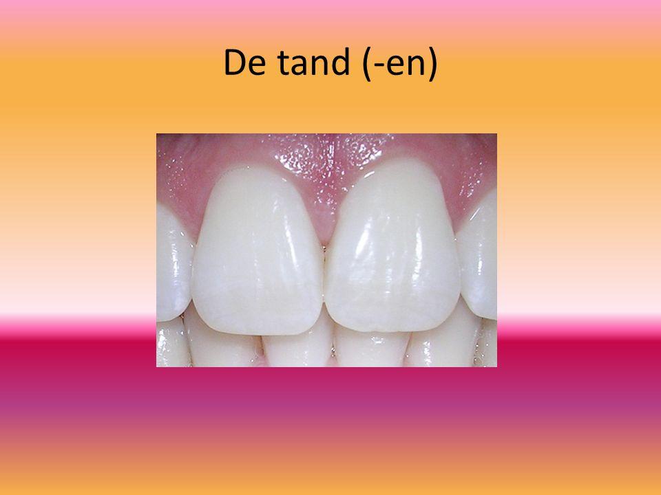 De tand (-en)