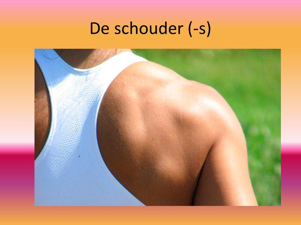 De schouder (-s)