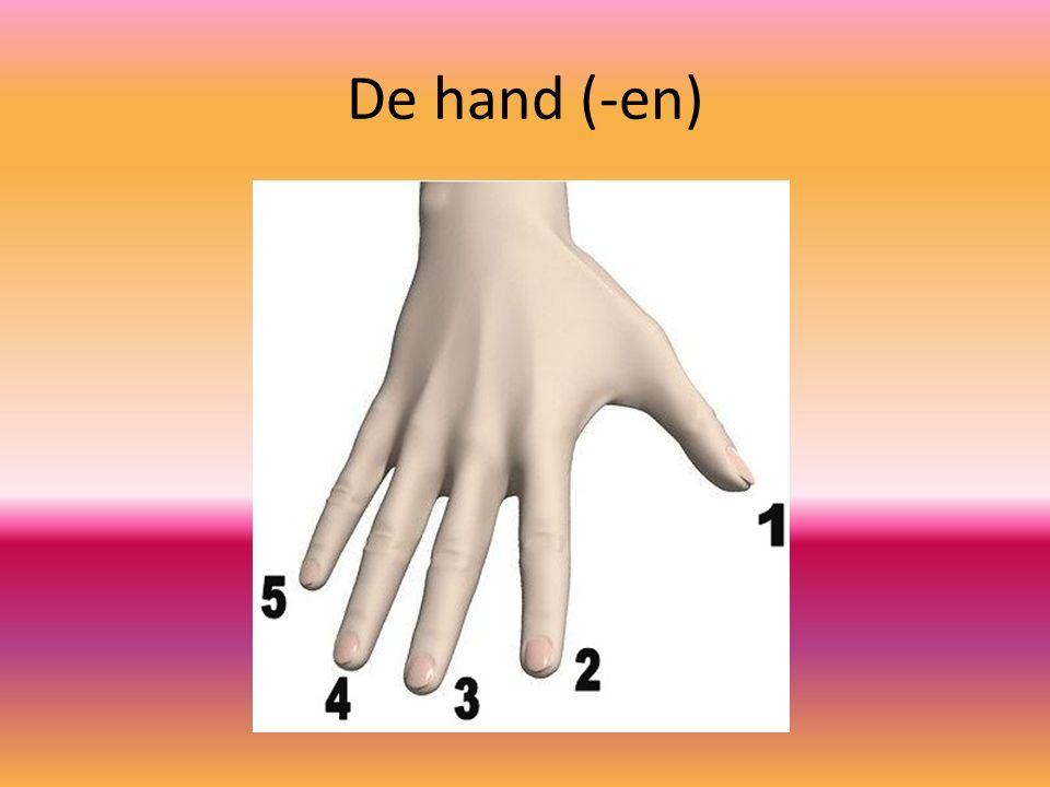 De hand (-en)