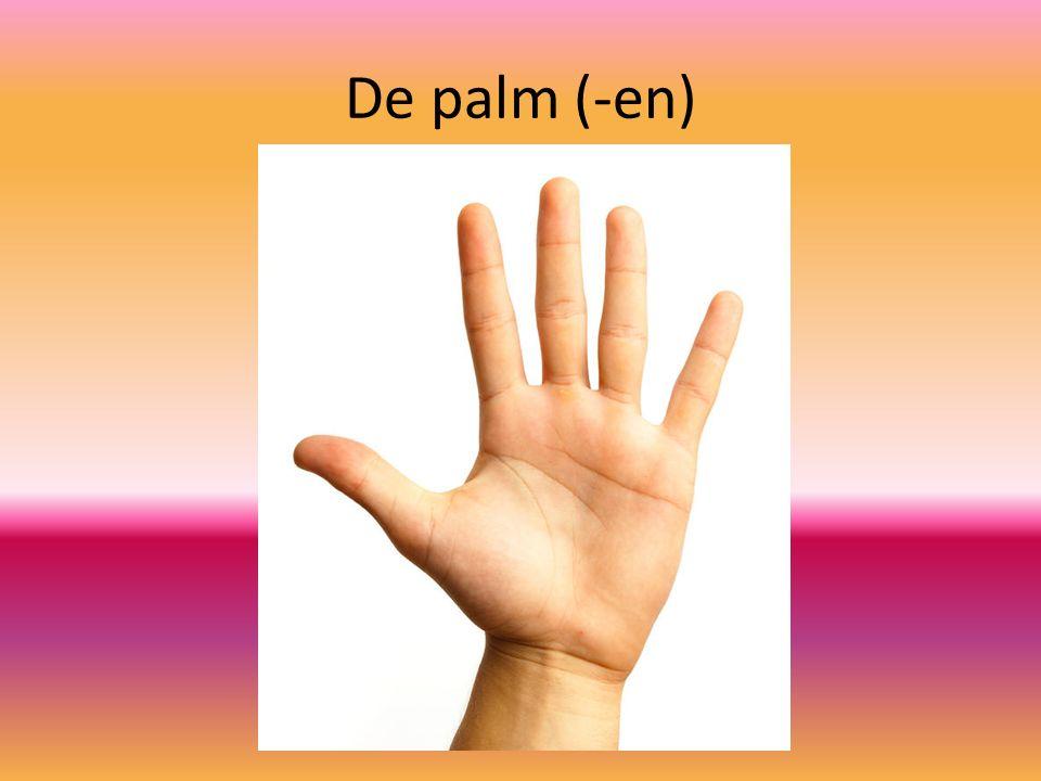 De palm (-en)