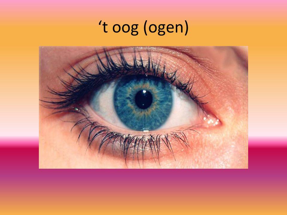 't oog (ogen)