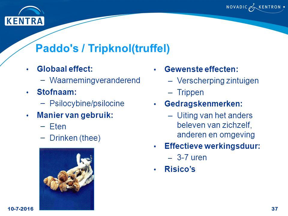 10-7-201637 Paddo's / Tripknol(truffel) Globaal effect: – Waarnemingveranderend Stofnaam: – Psilocybine/psilocine Manier van gebruik: – Eten – Drinken
